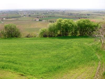 Villafranchese e Colli Morenici